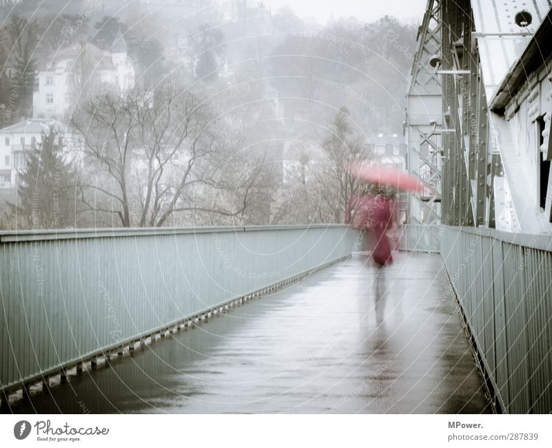 Rainy Days Human being Feminine Woman Adults Back Legs 1 18 - 30 years Youth (Young adults) Wind Fog Bridge Manmade structures Umbrella Walking Running Gloomy
