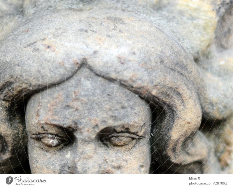 stone maiden Human being Head Face 1 Art Sculpture Stone Old Historic Gray Decline Transience Figure Statue Eyes Black & white photo Subdued colour Close-up