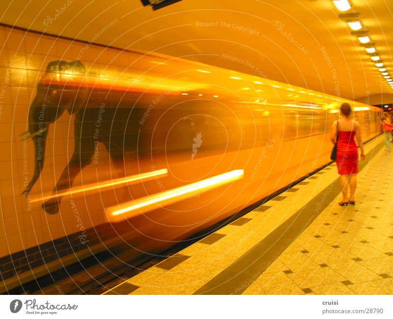 elephant race Underground Commuter trains Railroad Railroad tracks Speed Blur Yellow Tunnel Elephant Transport Berlin Orange