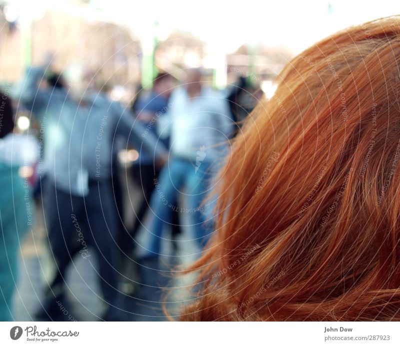 spectator Head Hair and hairstyles Group Dance Joy Contentment Political movements Audience Observe Red-haired Exuberance Together Dance party Dance floor