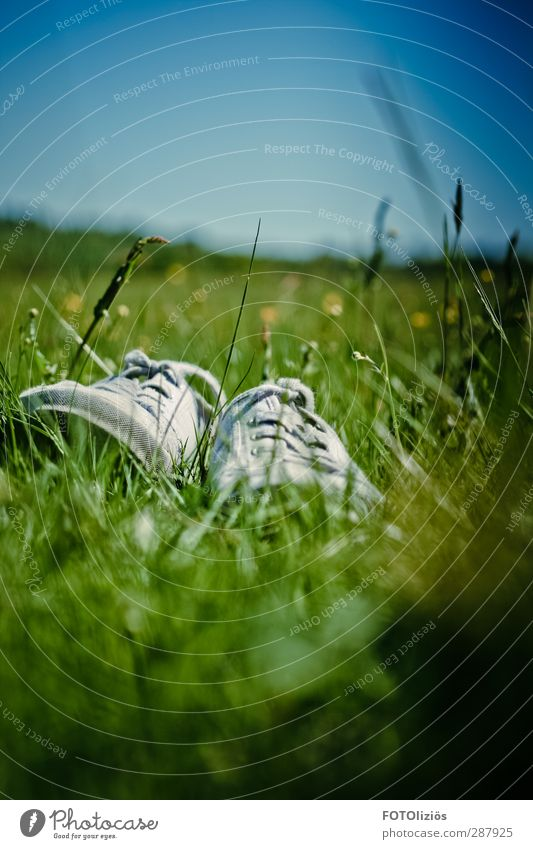 Sky Nature Plant Joy Landscape Meadow Freedom Moody Footwear Leisure and hobbies Cloudless sky