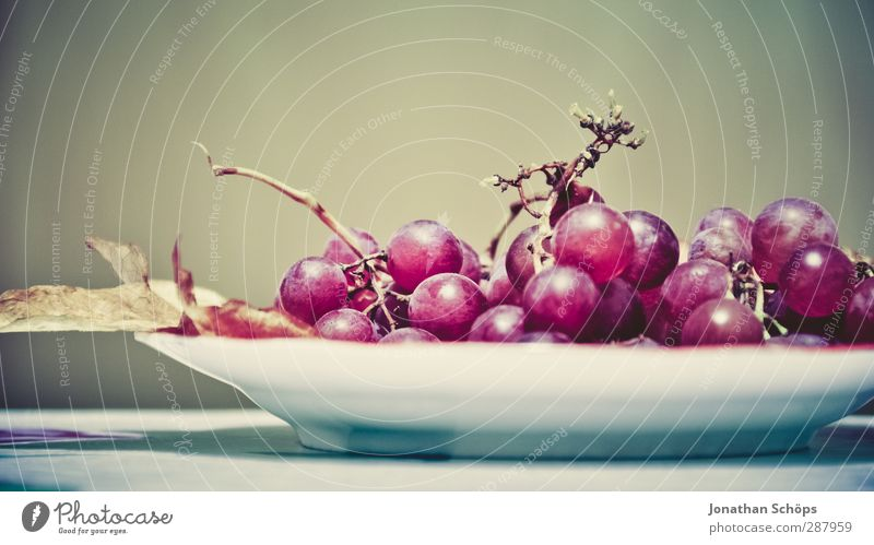 grape platter Food Fruit Nutrition Dinner Organic produce Vegetarian diet Wine Delicious Bunch of grapes Plate Vine Violet Red Food photograph Dessert Vitamin