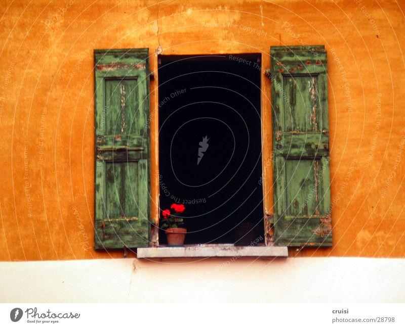 Green Calm Wall (building) Window Orange Europe Happiness Open Italy Honest Shutter Window board Lake Garda