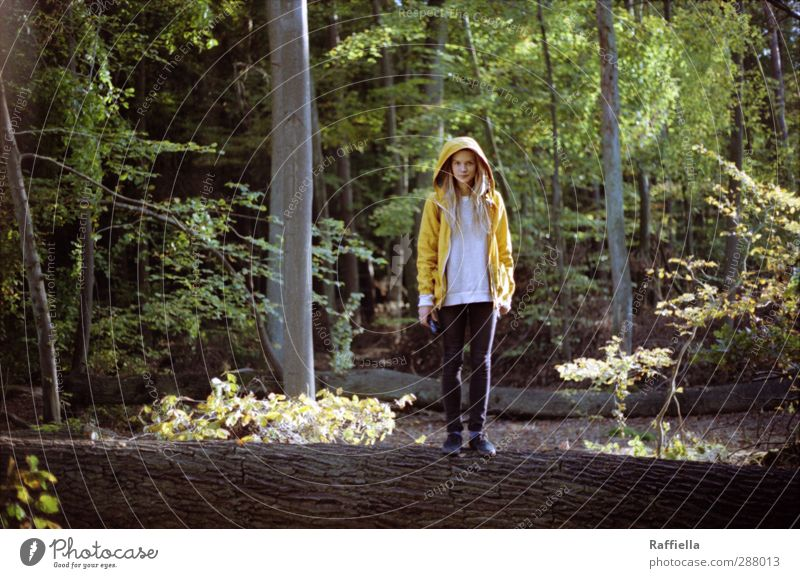 Human being Nature Youth (Young adults) Plant Tree Landscape Adults Forest Yellow Environment Young woman Feminine 18 - 30 years Legs Body Footwear