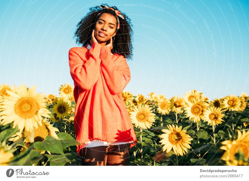 Happy young black woman walking in a sunflower field Woman Sunflower Meadow Ethnic Flower Black African Agriculture Smiling Yellow Cute Summer Sky Plantation