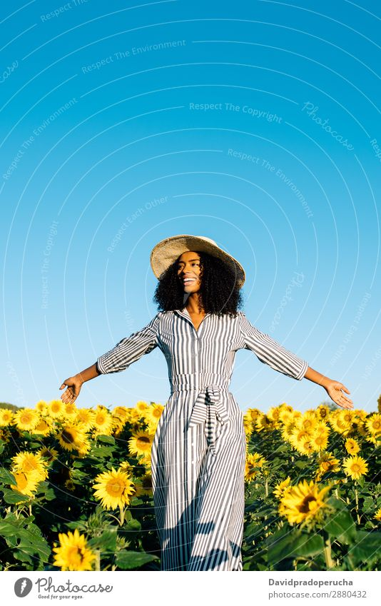 Happy young black woman walking in a sunflower field Woman Sunflower Field Ethnic Black Curly African mixed-race Cute Youth (Young adults) Smiling sunflowers