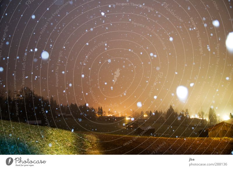 first snow Life Well-being Environment Nature Elements Air Clouds Winter Snow Snowfall Meadow Saanenland To fall Color gradient Places Patch White Speckled