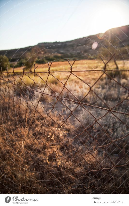Nature Summer Landscape Environment Meadow Warmth Natural Field Beautiful weather Fence Wire netting fence