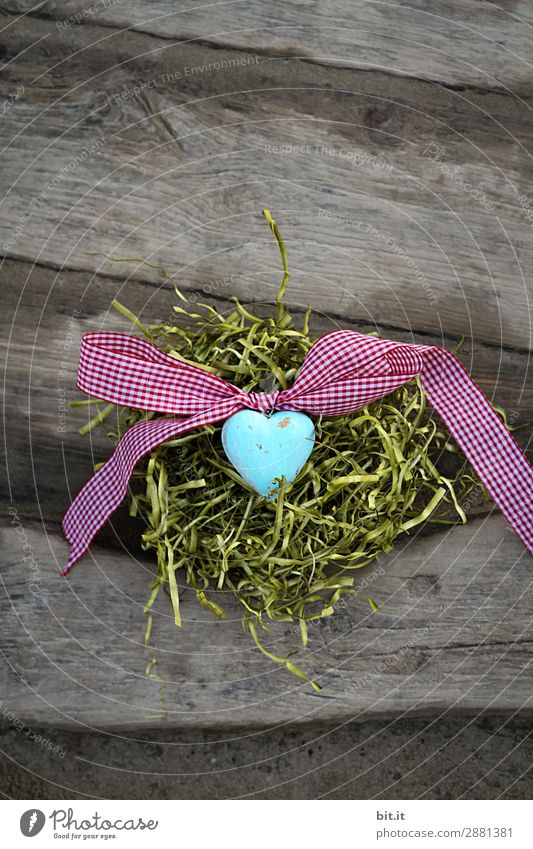 Blue heart with bow, on a wooden background in the Easter nest. Feasts & Celebrations Valentine's Day Mother's Day Nature Grass Moss Decoration Bow Kitsch