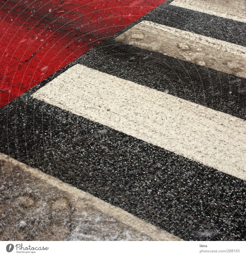 crossing Winter Deserted Transport Traffic infrastructure Street Lanes & trails Town Gray Red White Zebra crossing street crossing Footprint Snow mud Striped