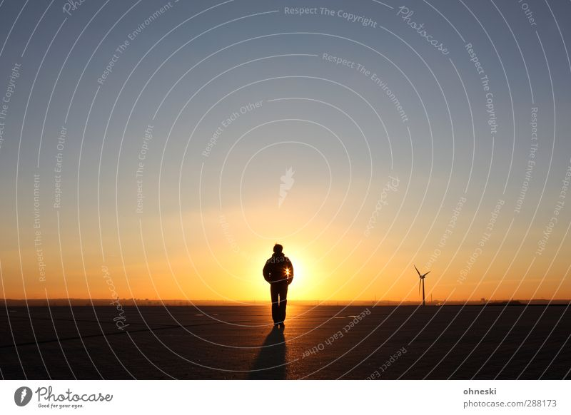 Human being Man Sun Adults Far-off places Horizon Power Masculine Beautiful weather Future Elements Hope Belief Brave Cloudless sky Climate change