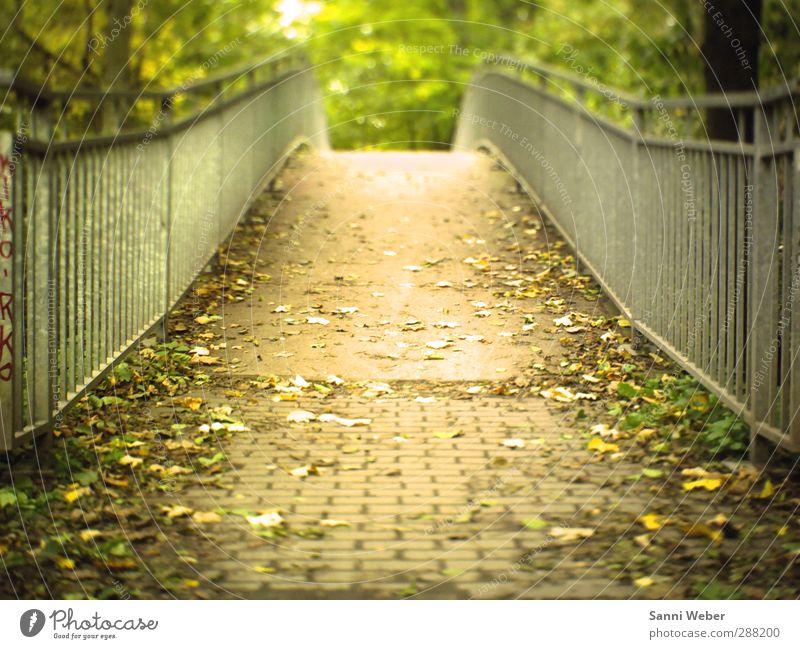 Brückentag Nature City Beautiful Loneliness Landscape Leaf Autumn Think Garden Moody Park Tourism Free Happiness Bridge Adventure