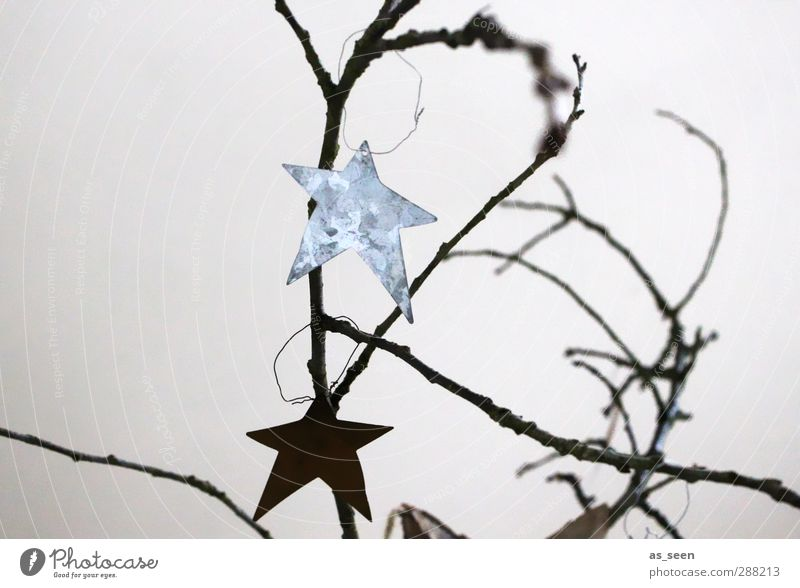 Christmas & Advent White Black Wood Gray Metal Glittering Elegant Design Stars Decoration Esthetic Sign Creativity Hang Silver
