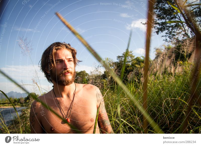 In the reeds Man Human being Young man Nature Grass Common Reed Stand Masculine Exterior shot Lake River Portrait photograph Facial hair Beard Naked Upper body