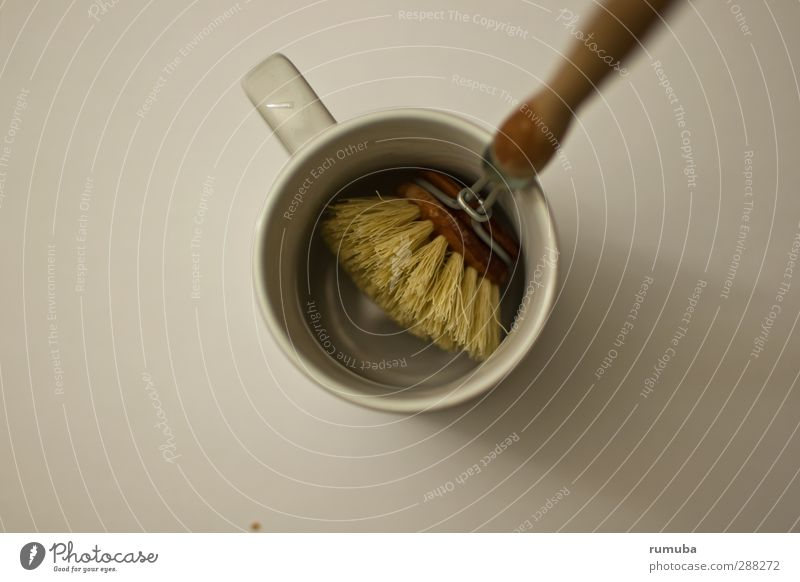 Flat (apartment) Cleaning Kitchen Crockery Mug Brush Do the dishes Rinse
