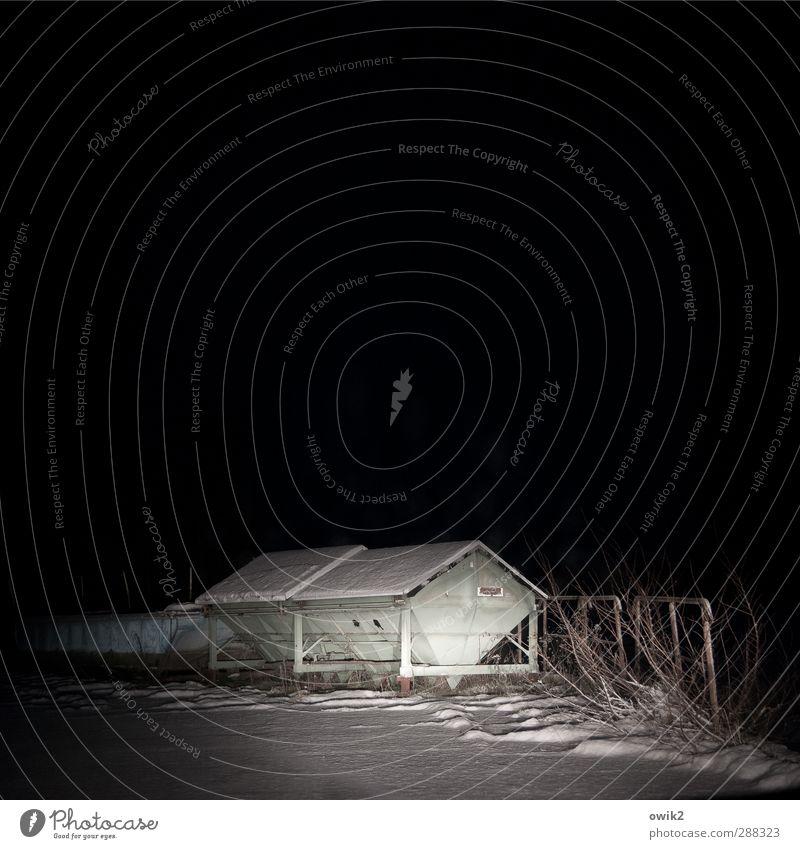Nature White Loneliness Landscape Winter Black Dark Environment Snow Lighting Metal Ice Gloomy Bushes Dangerous Threat
