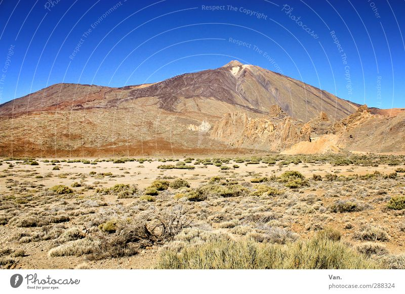 Teide III Vacation & Travel Hiking Nature Landscape Earth Cloudless sky Plant Bushes Rock Mountain Peak Volcano Tenerife Tall Blue Brown Sparse Colour photo