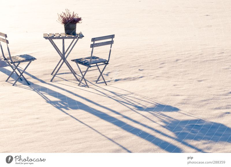 winter break Chair Table Garden chair Beer table Nature Winter Snow Dianthus deltoides Cold Idyll Shadow Loneliness Snow layer Colour photo Subdued colour