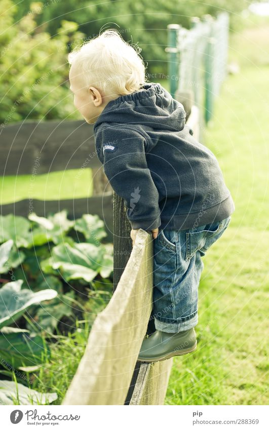sound out boundaries Child Boy (child) Infancy Hair and hairstyles 1 Human being 1 - 3 years Toddler Nature Landscape Spring Beautiful weather Garden Meadow