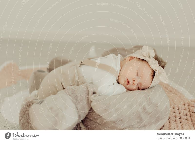 Portrait of a newborn baby sleeping Beautiful Face Life Child Baby Infancy Sleep Dream Small Natural New Cute Soft White Innocent Newborn blanket Caucasian kid