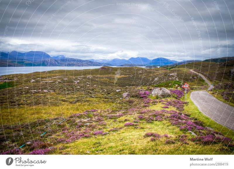 Nature Vacation & Travel Loneliness Landscape Clouds Far-off places Street Grass Freedom Climate Bushes Europe Trip Bay Moss Fjord