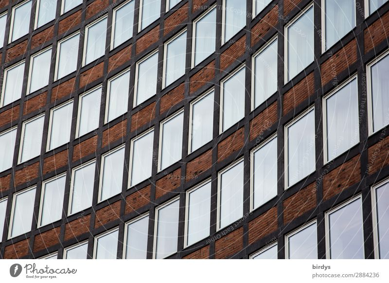 instructed others Flat (apartment) House (Residential Structure) High-rise Architecture Office building Facade Window Stone Glass Line Authentic Town Education