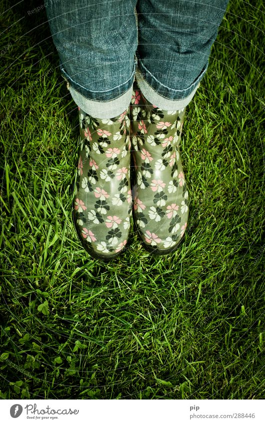 summer shoes 2011, 2012, ... Woman Adults Legs Human being Summer Bad weather Grass Meadow Pants Rubber boots Green Leisure and hobbies Fashion Wet Rain
