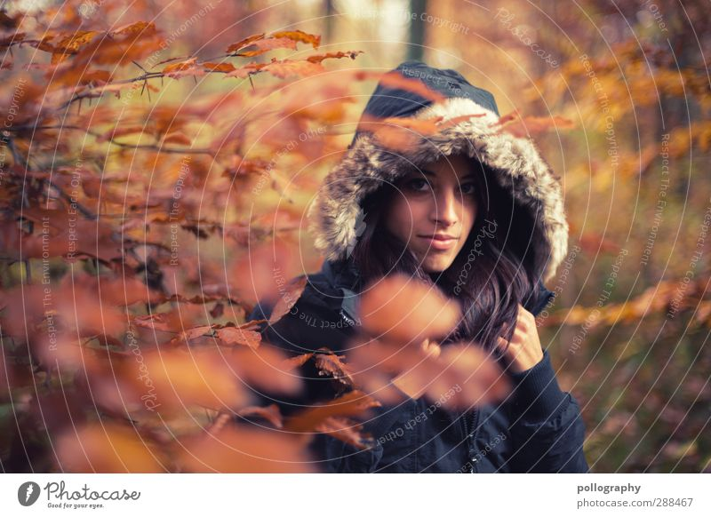 Human being Woman Nature Youth (Young adults) Plant Tree Leaf Landscape Adults Forest Young woman Autumn Life Feminine Emotions 18 - 30 years