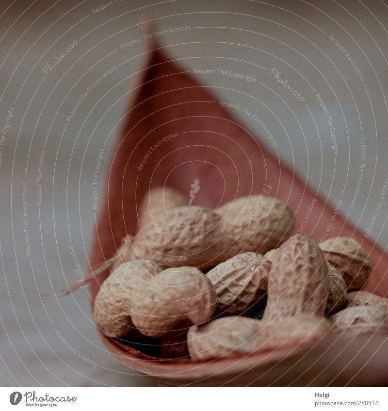 Christmas & Advent Beautiful Eating Lie Brown Natural Food Arrangement Living or residing Nutrition Esthetic Simple Uniqueness Dry Joie de vivre (Vitality)