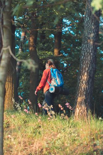 Woman hiker with backpack in forest during summer trip Human being Vacation & Travel Nature Summer Plant Beautiful Green Tree Relaxation Forest Lifestyle Adults