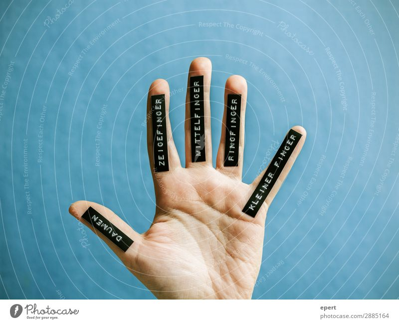 Hand Characters Arrangement Signs and labeling Fingers Idea Thumb Label Lettering Forefinger Middle finger Ring finger Little finger