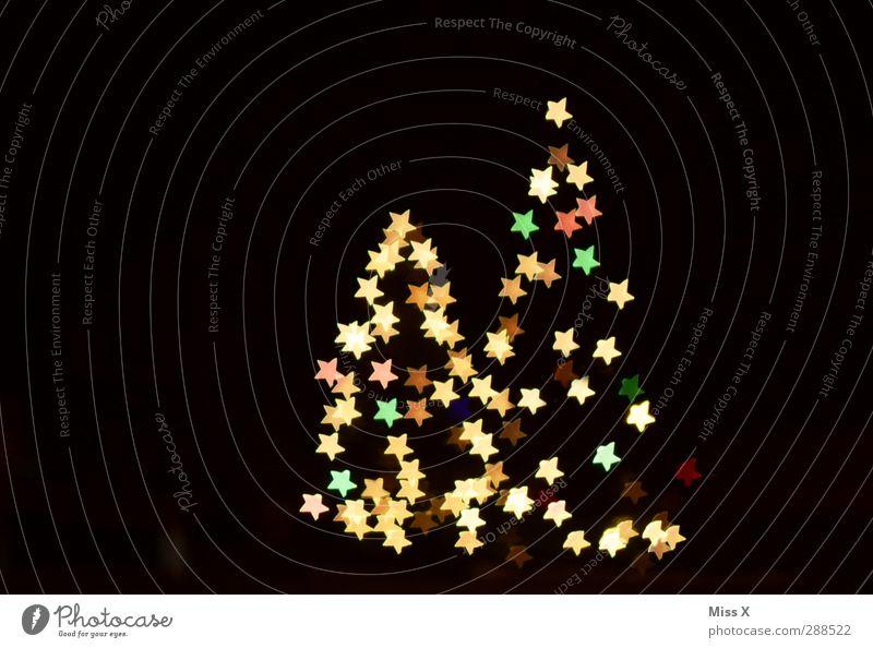 Christmas & Advent Tree Winter Glittering Illuminate Stars Star (Symbol) Many Christmas tree Fir tree Christmas decoration Night sky Fairy lights
