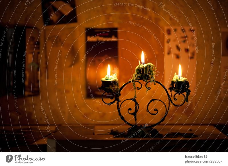 ignition candles Lifestyle Luxury Senses Relaxation Leisure and hobbies Handcrafts Entertainment Art Listen to music Book Reading Hut Industrial plant Church