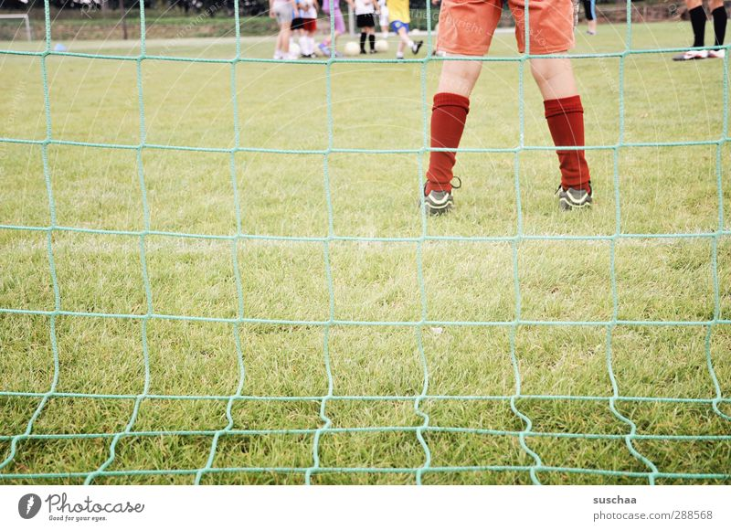 She stands in the goal - in the goal - in the goal ... Playing Sports Sports team Goalkeeper Football pitch Masculine Androgynous Child Girl Infancy