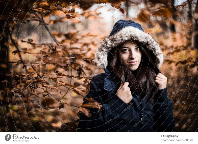 Human being Woman Nature Youth (Young adults) Plant Landscape Forest Adults Young woman Cold Autumn Feminine Emotions Happy 18 - 30 years Moody