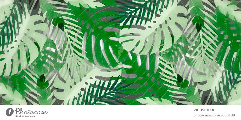 Tropical Leaves Background A Royalty Free Stock Photo From Photocase Download the perfect tropical leaves pictures. photocase