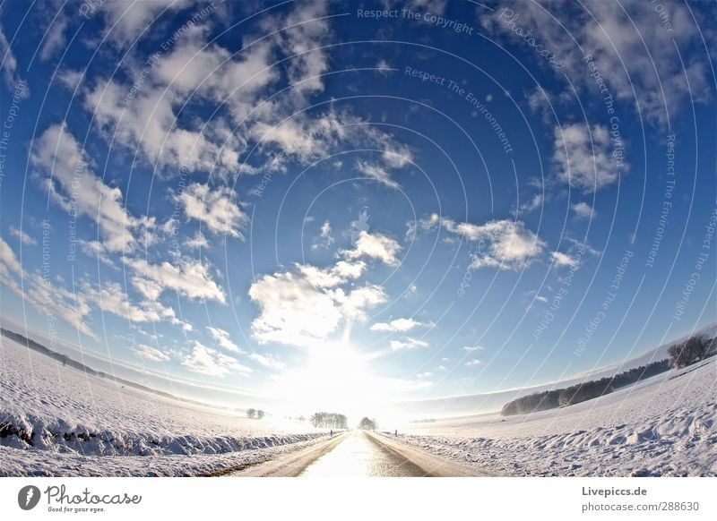 Way to the sun Nature Landscape Sky Clouds Sun Sunlight Winter Beautiful weather Snow Plant Tree Field Transport Traffic infrastructure Street Illuminate Blue