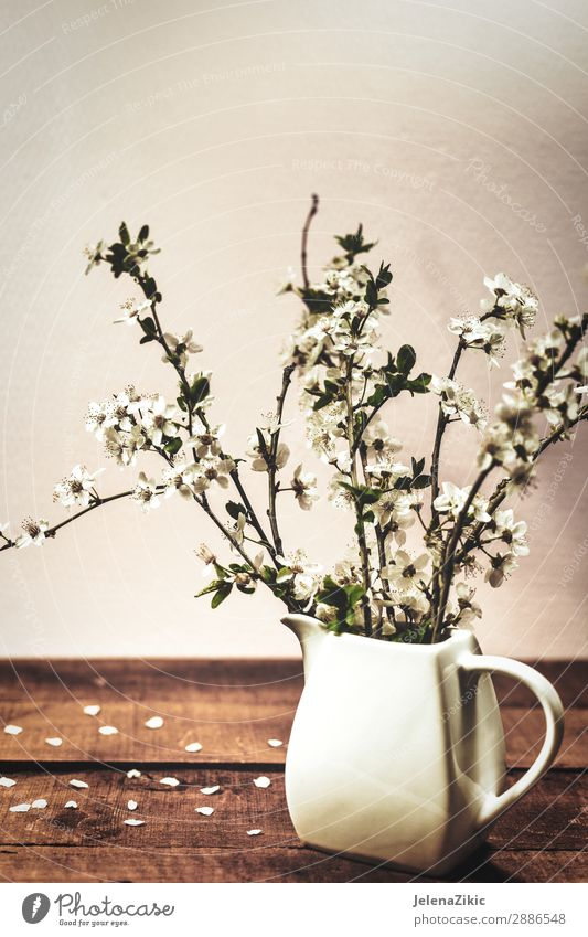 Vintage Spring Floral Background A Royalty Free Stock