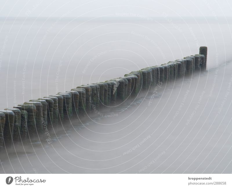 breakwater Nature Landscape Air Water Sky Autumn Waves Coast Baltic Sea Island Usedom Manmade structures Wall (barrier) Wall (building) Wood Infinity Calm Soft