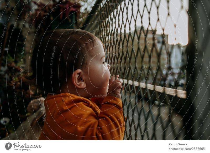 Baby looking from balcony Balcony Colour photo Exterior shot Day House (Residential Structure) Wall (barrier) Living or residing lockdown Quarantine