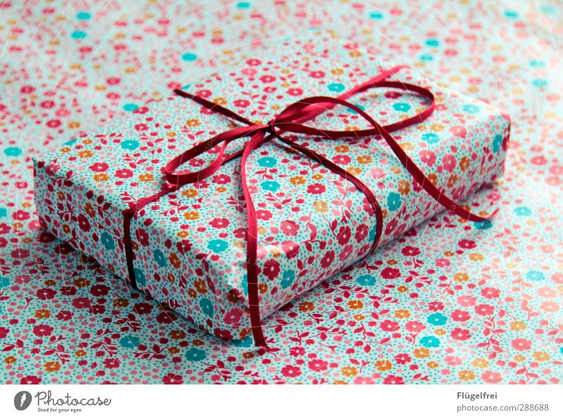 Christmas & Advent Flower Birthday Gift Surprise Anticipation Bow Camouflage
