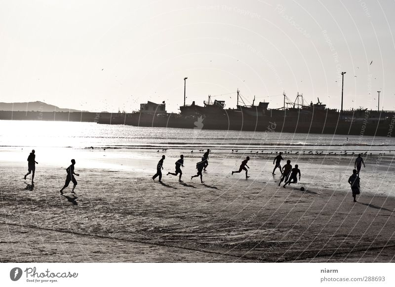 cultivated kick on the beach Playing Sports Ball sports Soccer Sporting Complex Sand Water Harbour Beach Outskirts Walking Beach soccer Brazil South America