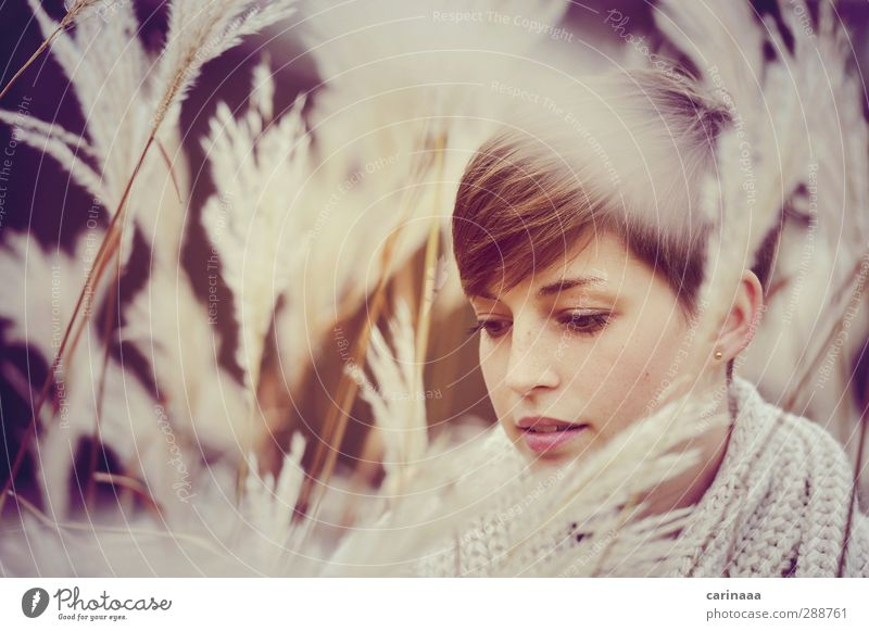 Autumn Feminine Woman Adults Head Hair and hairstyles Face 1 Human being 18 - 30 years Youth (Young adults) Sweater Cloth Brunette Short-haired Looking Dream