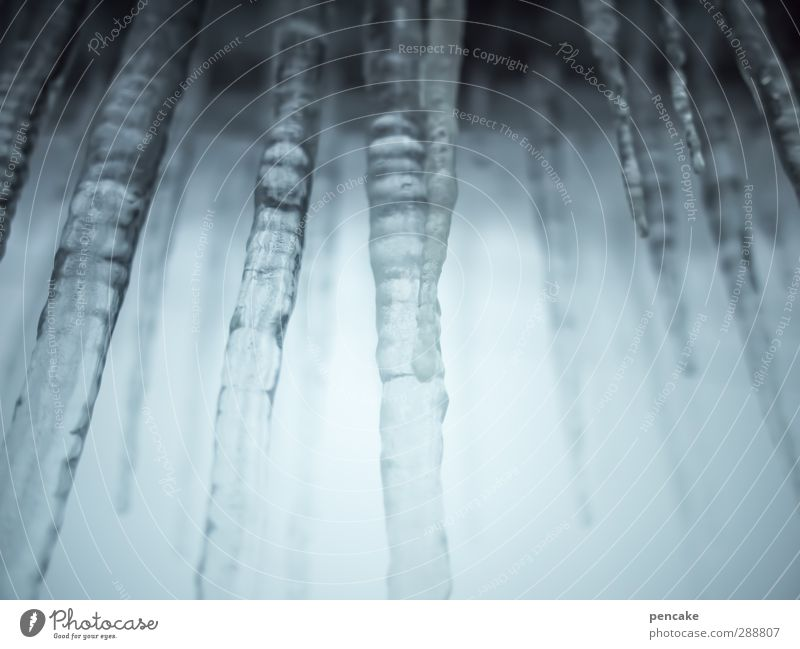 on ice! Water Sky Winter Weather Ice Frost Thirst Perpetual ice Icicle Captured Rod Stalactie cave Frozen Freeze Drink ingredient Colour photo Subdued colour