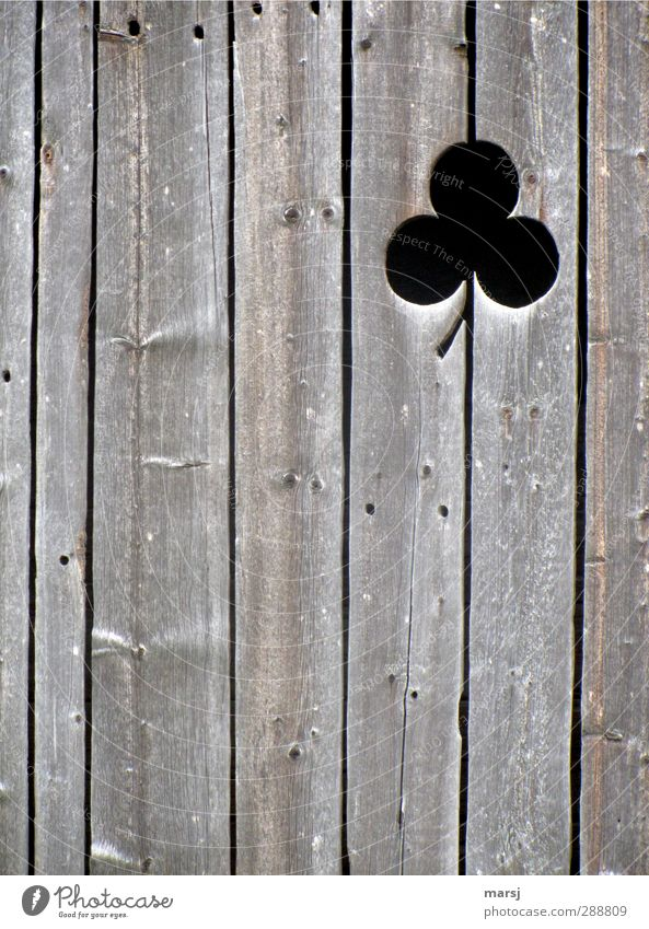 wood clover Wooden board Wooden wall Museum Hut Barn Facade Sign Ornament Old Simple Elegant Brown Black Weathered Cloverleaf Colour photo Subdued colour