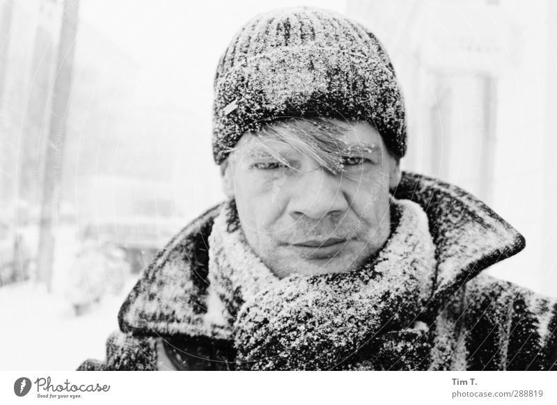 "Ick Human being Masculine Head 1 30 - 45 years Adults Winter Snow Snowfall Warm-heartedness ""Tim,"" Cap Scarf Colour photo Exterior shot Day Portrait photograph"
