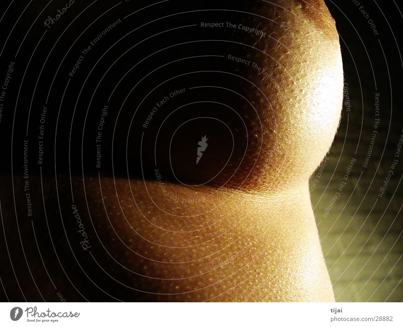 Woman Feminine Skin Breasts Round Soft Chest