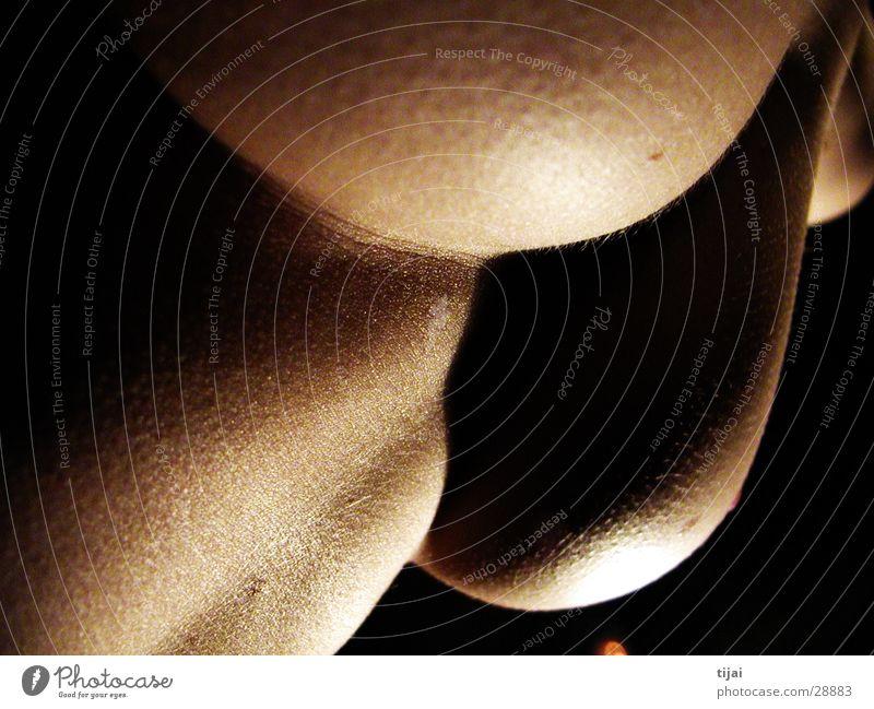 softy de luxe 3 Round Soft Feminine Woman Breasts Skin