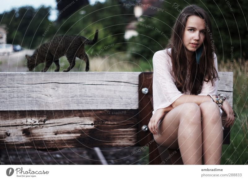 CATS II Feminine Young woman Youth (Young adults) Woman Adults Life 1 Human being 18 - 30 years Nature Landscape Summer Park Hair and hairstyles Brunette