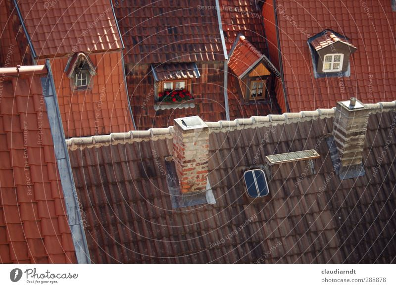 BirdPerspective quedlinburg Germany Europe Small Town Old town House (Residential Structure) Detached house Building Architecture Window Roof Chimney